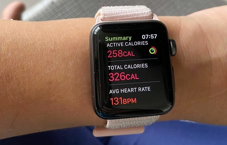 calories count on apple watch